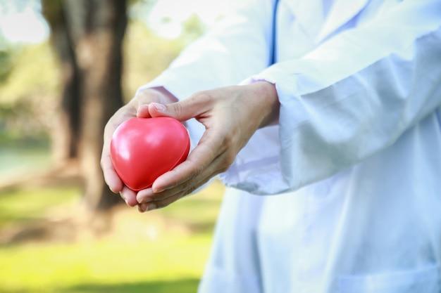 Médicas seguram um coração vermelho e fazem uma mão em forma de coração. o fundo é uma árvore verde. Foto Premium