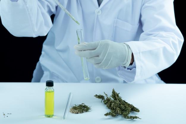 Médico mão segure e ofereça ao paciente maconha medicinal e óleo. Foto gratuita