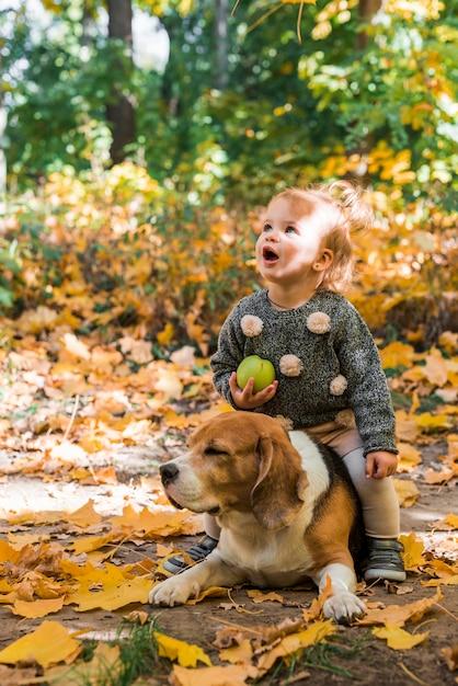 Menina bonita que guarda a bola que senta-se em seu cão do lebreiro do animal de estimação na floresta Foto gratuita