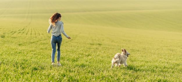 Menina com cachorro no campo ensolarado Foto Premium