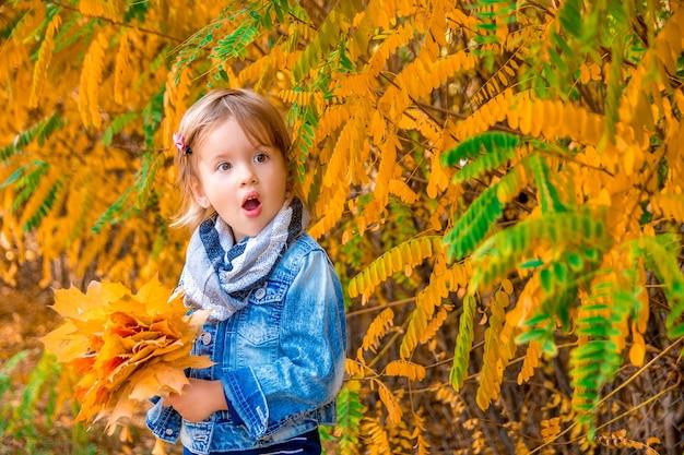 Menina com folhas de outono douradas amarelas. brincadeira ao ar livre no parque. uau. Foto Premium