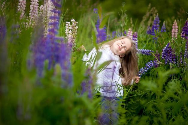 Menina, com, um, buquê, em, a, mãos, de, roxo, flores, tremoço, campo roxo, flores, tremoço, campo, pôr do sol Foto Premium
