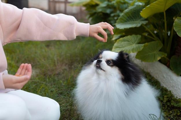 Menina dando uma comida para o cachorro dela Foto gratuita