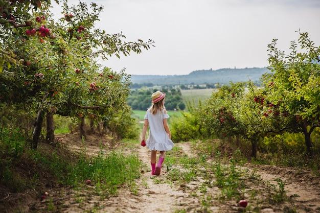 Menina de chapéu e botas de chuva caminha e come maçã doce no pomar de maçãs Foto Premium