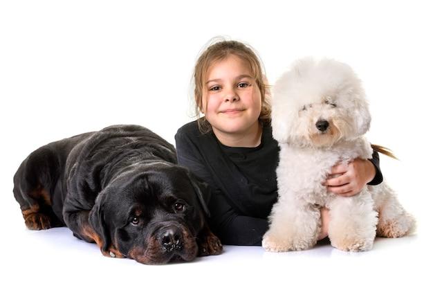 Menina e cachorros Foto Premium