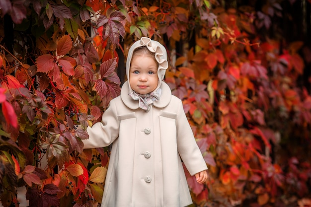 Menina em uma caminhada no parque do outono Foto Premium