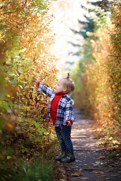 Menina na floresta de outono recolhe folhas Foto Premium
