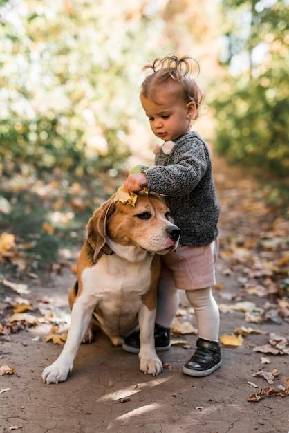 Menina pequena bonito brincando com cachorro beagle Foto gratuita