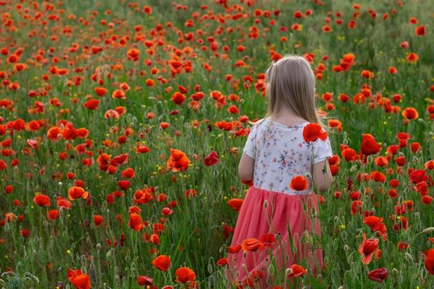 Menina pequena bonito da criança loura no vestido branco e vermelho no no campo da papoila no por do sol Foto Premium