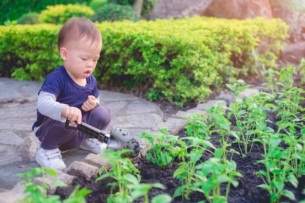 Menino asiático da criança que planta a árvore nova no solo preto no jardim verde Foto Premium