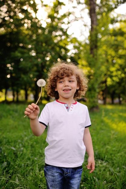 Menino bebê, com, dandelion, em, mão, ligado, experiência verde Foto Premium