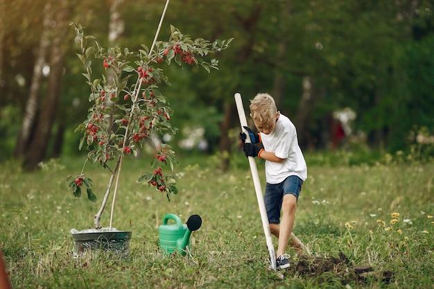 Menino bonitinho plantando uma árvore em um parque Foto gratuita