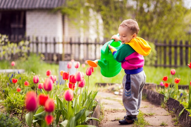 Menino bonitinho regando flores Foto Premium