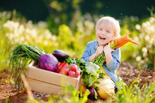 Menino bonitinho segurando um monte de cenouras orgânicas frescas no jardim interno Foto Premium