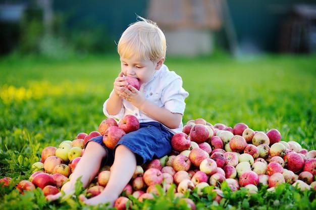 Menino bonito da criança sentada na pilha de maçãs e comendo maçã madura no jardim doméstico Foto Premium