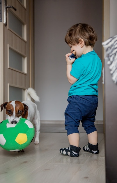 Menino brincar com seu jack russell terrier cachorro. Foto Premium
