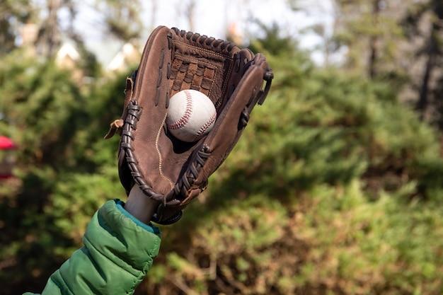 Meninos jovens, mão, pegando, bola beisebol, em, jardim Foto Premium