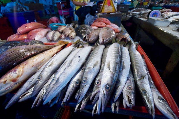 Mercado de peixe marinho na província de sumon sakhon, tailândia Foto Premium