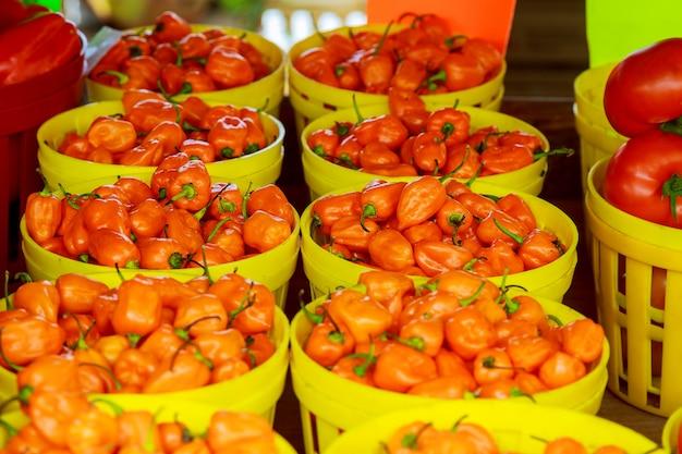 Mercado do agricultor vendendo pimentos Foto Premium