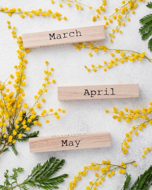 Meses de primavera com galhos de flores Foto gratuita