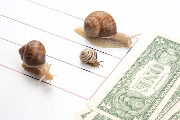 Metáfora para alcançar o sucesso financeiro nos negócios. caracóis correm em uma pista de corrida para a riqueza perseverança no trabalho e tempo para vencer. conceito de exibição de competição de negócios Foto Premium