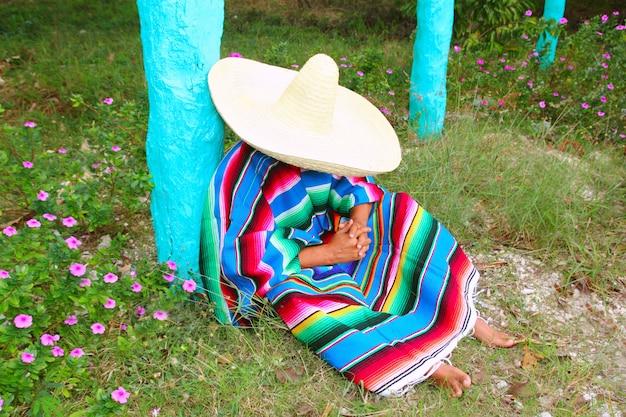 Mexicano preguiçoso sombrero chapéu homem poncho nap jardim Foto Premium
