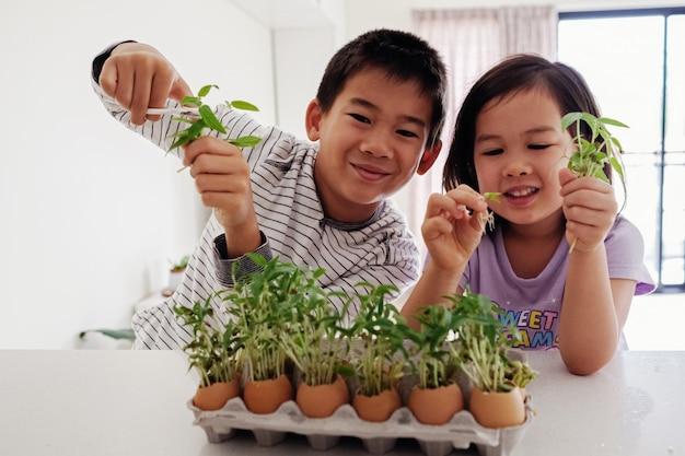 Misto de crianças asiáticas segurando mudas em cascas de ovos Foto Premium