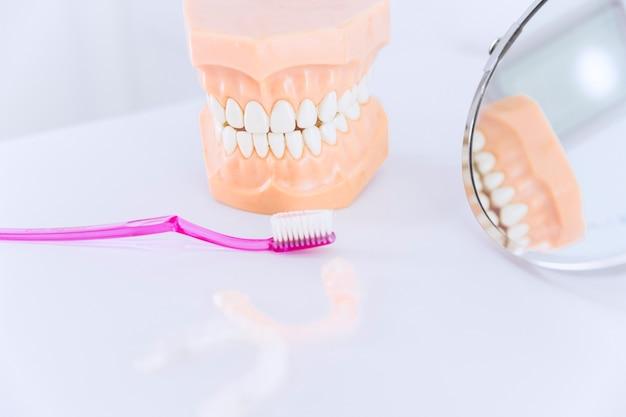 Modelo de dentes com escova de dentes; alinhador de espelho e dentes na mesa Foto Premium