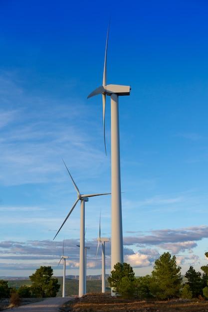 Moinhos de vento energia elétrica verde no céu azul de montanha de pinho Foto Premium