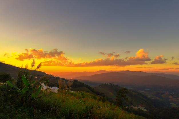 Moita de grama com fundo por do sol, névoa da montanha e nascer do sol no inverno Foto Premium