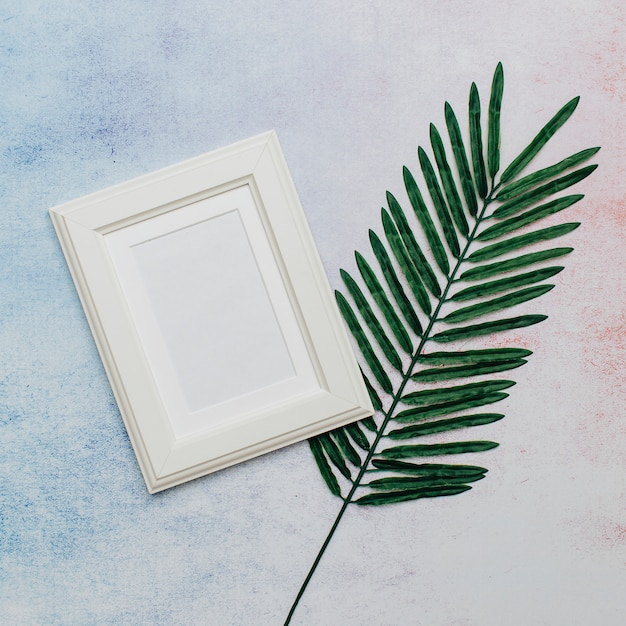 Moldura branca com folha de palmeira Foto gratuita