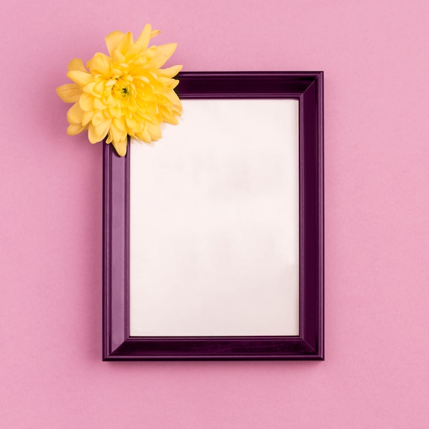 Moldura com flor em botão Foto gratuita