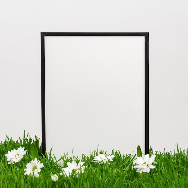 Moldura de madeira na grama natural verde. clima de primavera. conceito de férias da páscoa. copie o espaço. Foto Premium