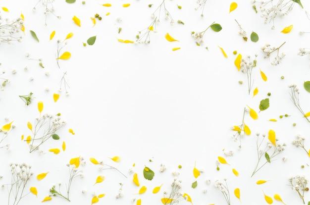 Moldura decorativa de flores Foto gratuita