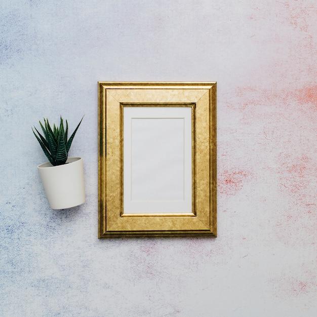 Moldura dourada com cacto sobre superfície aquarela Foto gratuita