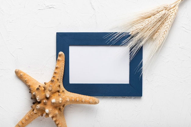 Moldura plana leiga e estrela do mar na mesa Foto gratuita
