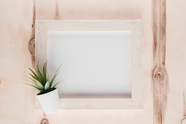 Moldura plana minimalista com planta Foto gratuita