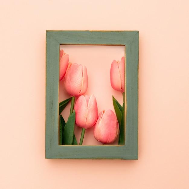 Moldura verde com tulipas Foto gratuita