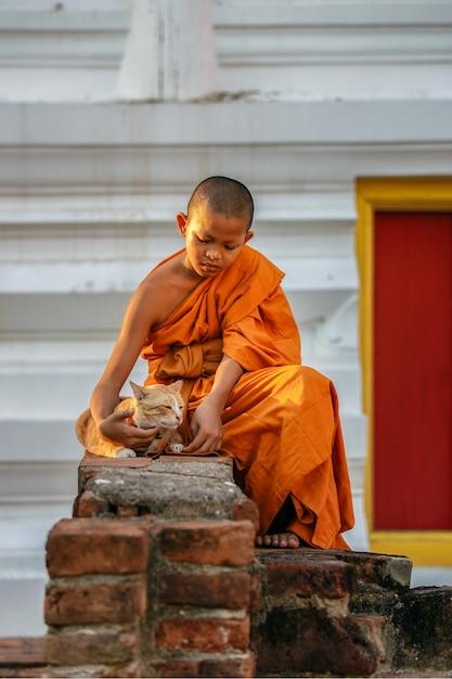 Monges novatos jovens brincando de gato no antigo templo na província de ayutthaya, tailândia Foto Premium