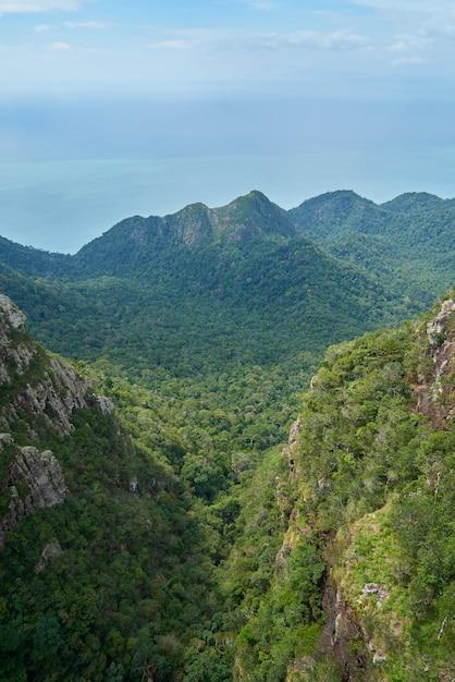Montanha com árvores visto de cima Foto gratuita