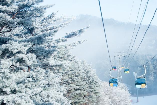 Montanha de balwangsan no inverno, coreia Foto Premium