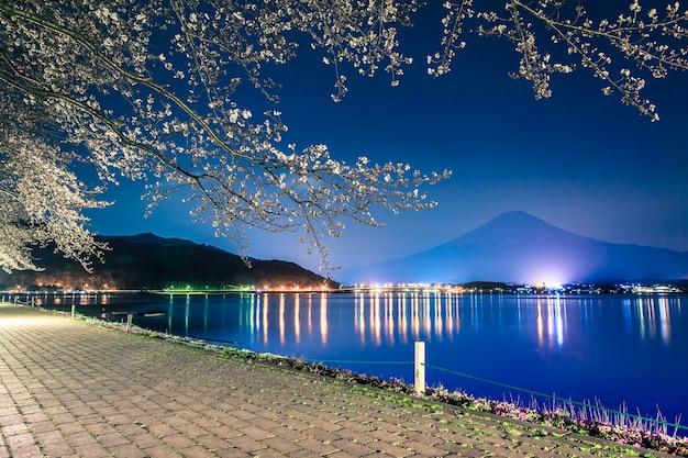 Montanha fuji e flor de cerejeira sakura na temporada de primavera Foto Premium