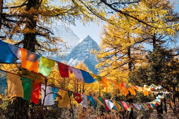 Montanha sagrada de xiannairi com bandeiras coloridas de oração soprando na floresta de outono Foto Premium
