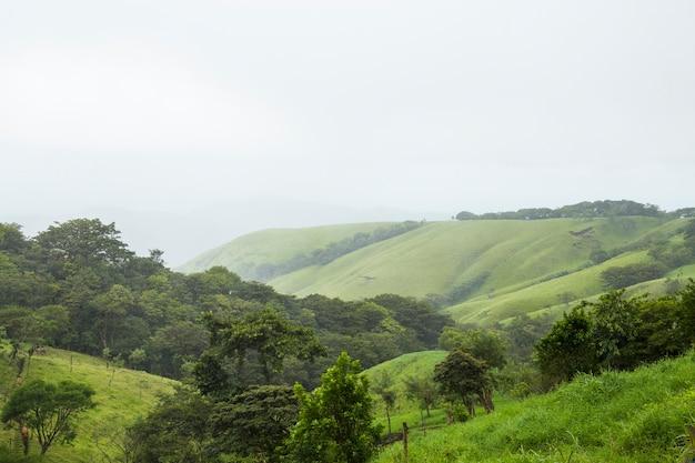 Montanha verde pacífica na costa rica tropical Foto gratuita