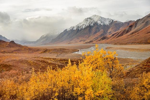 Montanhas, com, neve, topo, paisagem, em, parque nacional denali, alasca Foto Premium
