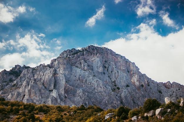 Montanhas russas Foto Premium