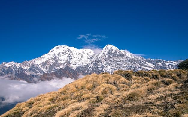 Monte annapurna bonito no nepal. Foto Premium