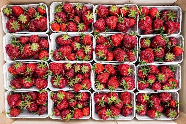 Morangos vermelhas bonitas em um mercado dos fazendeiros Foto gratuita