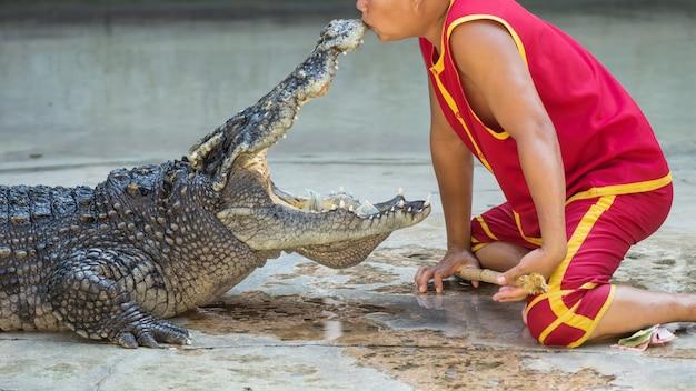Mostrar o rato beijando de crocodilo, tailândia Foto Premium