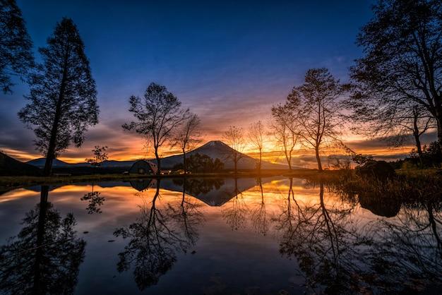 Mt. fuji com grandes árvores e lago ao nascer do sol em fujinomiya, japão Foto Premium